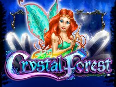 crystal forest2 - Crystal Forest