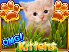 omg kittens2 - Viking Vanguard