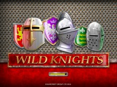 Wild Knights